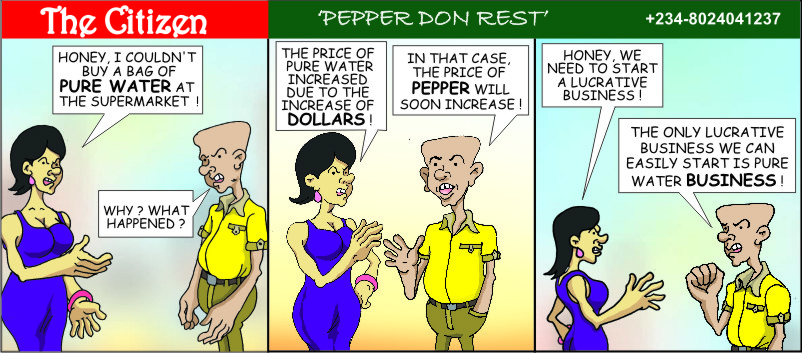 The CITIZEN pepper don rest