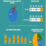 GDP quarterly report info graph 2. Picture Source / nigerianstat.gov.ng